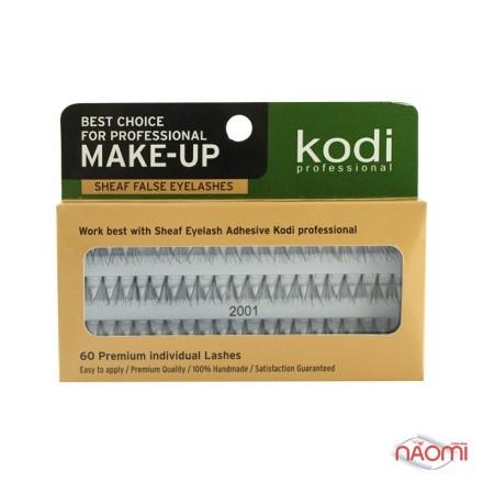 Ресницы накладные пучковые Kodi Professional № 2001, 60 шт., черные, фото 1, 75.00 грн.