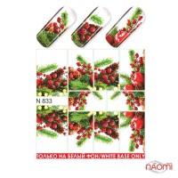 Слайдер-дизайн N 833 Зима, Новый год