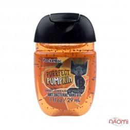 Санитайзер Bath Body Works PocketBac Purrfect Pumpkin, замурчательная тыква, 29 мл