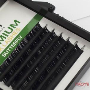 Ресницы Kodi professional Butterfly Green С 0.07 (6 рядов: 11 мм), черные