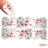 Слайдер-дизайн 0589 Цветы